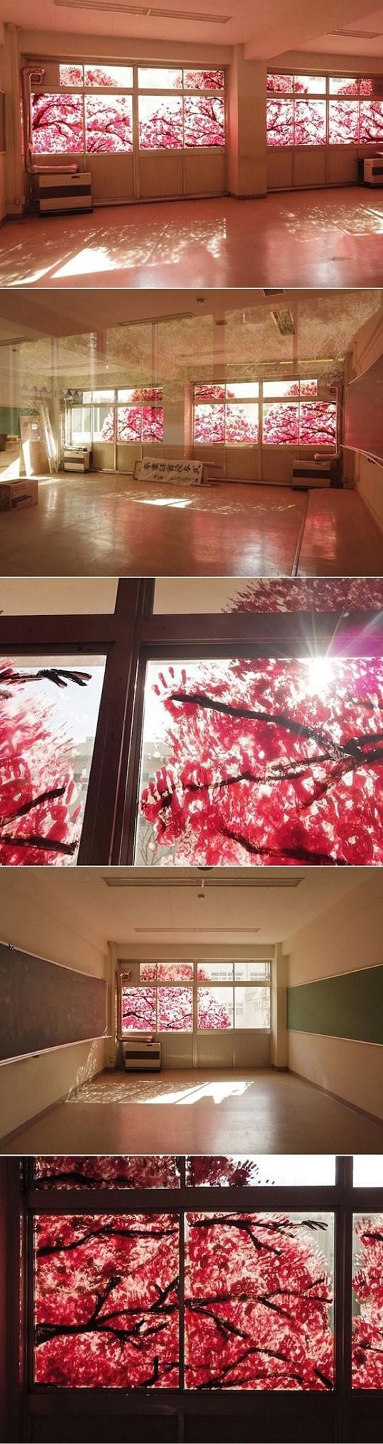 Kirschblüten vorm Fenster...oh warte...