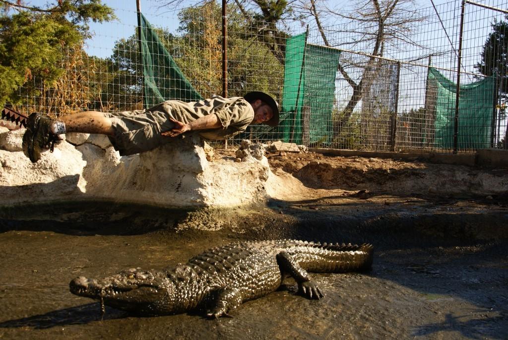 Krokodilplanking