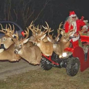 lustige weihnachtsvedeos